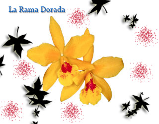 │*│ La Rama Dorada │*│